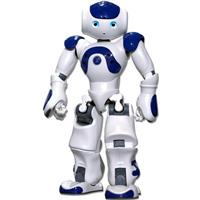 ربات 6
